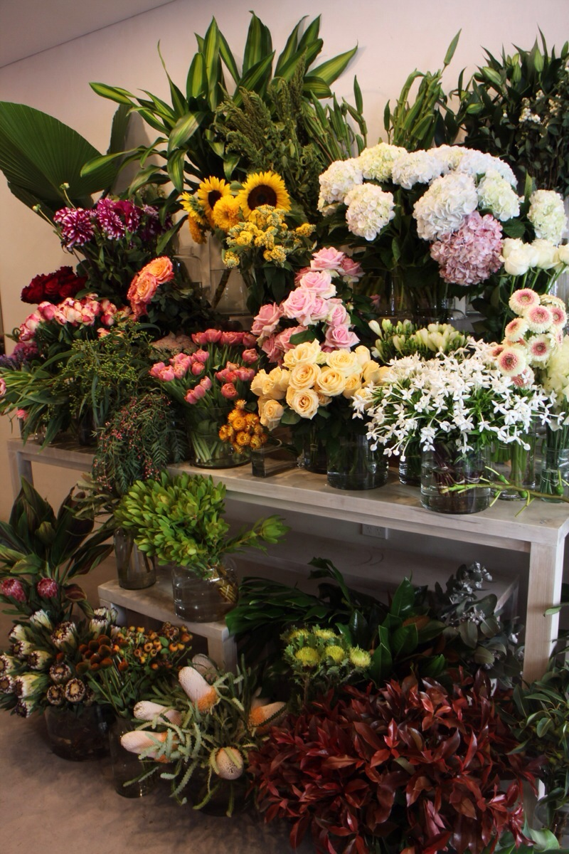 Boutique flower shop in darlinghurst sydney my darling flowers beautiful flower shop in darlinghurst sydney izmirmasajfo