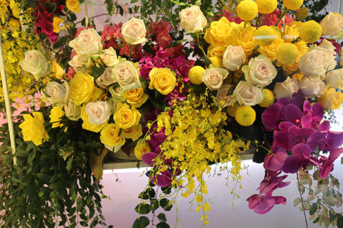 David Jones Spring Flower Show 2015 My Darling Flowers